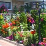Få en flot have billigt